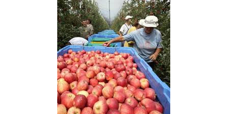 Produce safety grower training