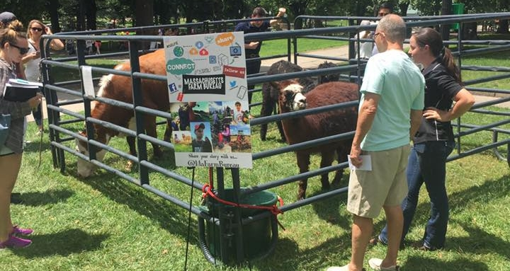 Farmers address questions about livestock