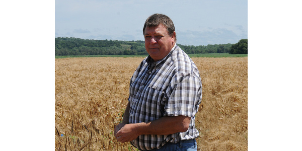 Kansas State University wheat breeder Allan Fritz looks over rows of wild emmer wheat being cross-bred with Kansas wheat varieties at the Ashland Bottoms research farm south of Manhattan. (Courtesy of K-State Research and Extension)