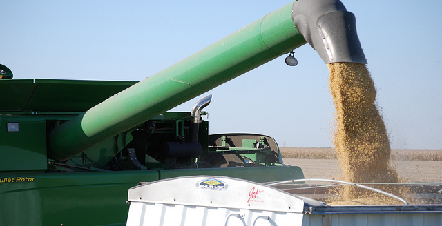 U.S. soy finds market support abroad