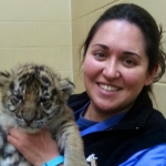 Amanda-Guthrie-Baby-Tiger-992x558