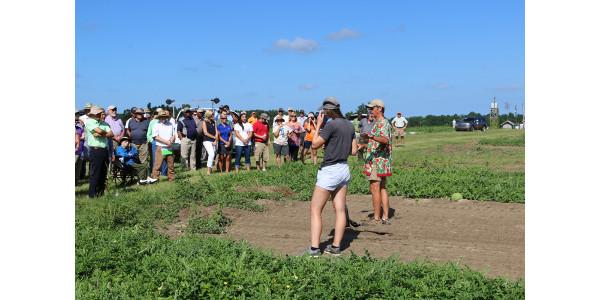 Clemson predicts outstanding watermelon crop
