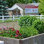 Attendees will have the opportunity to walk through the garden and learn from horticulture experts. (Courtesy of Iowa State University Extension and Outreach)