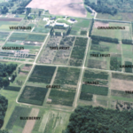 Aerial view of the Southwest Michigan Research and Extension Center. (Courtesy of MSU Extension)