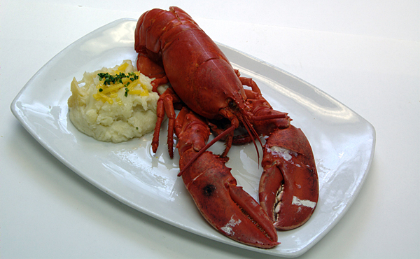 Lobster season slow, prices holding steady