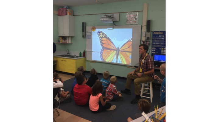 Monarchs in our schools