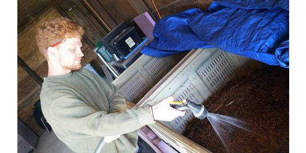 Student Garnett Bullock feeds the approximately 30,000 worms that live at the NC State Composting Learning Lab off Lake Wheeler Road in Raleigh. (Courtesy of NC State University)