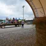 As the tractors started rolling, urban and rural attendees alike were ferried to several instructional stops that addressed gardening and vegetable diseases, hay storage, forage management and invasive plant species identification and control. (Courtesy of Farmstead Media)