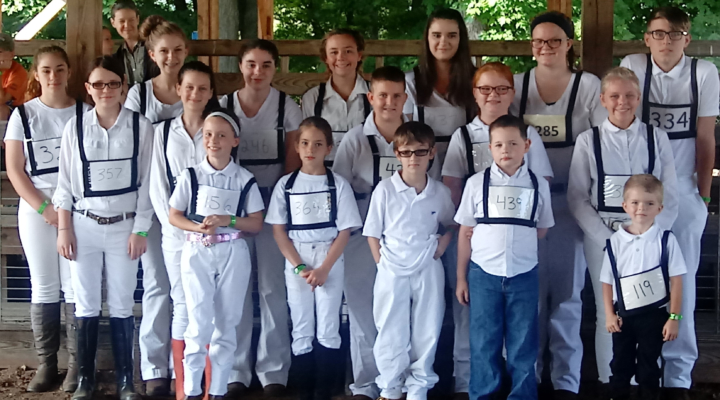 Allegany Co. Fair Youth Dairy Show results