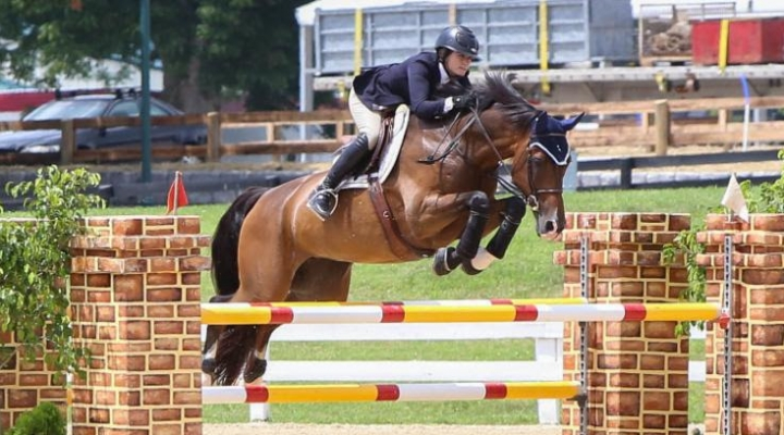 Colvin partners with Enviro Equine