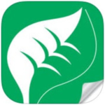CNGA is pleased to announce the new LooseLeaf Magazine app.