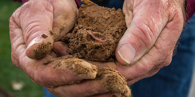 New list of soil health measurements
