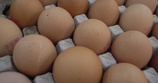 German supermarket chain yanks eggs
