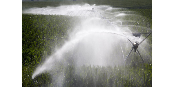 Water and crops field day offered Aug. 24