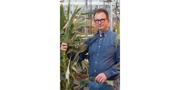 Taking the genomic revolution to corn fields
