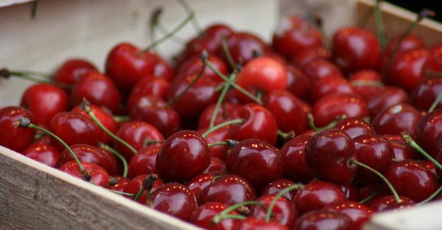 Inside look at cherry company