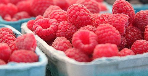 Studies explore benefits of red raspberries