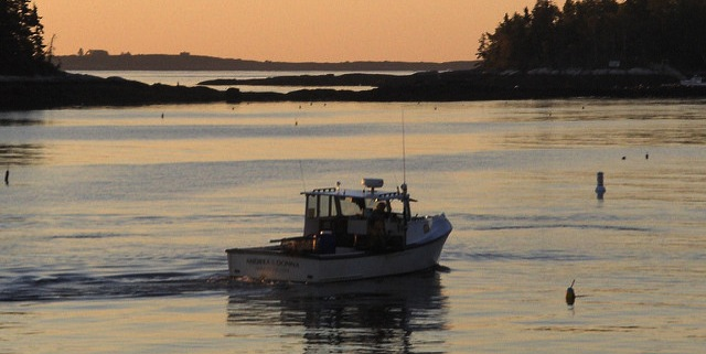 Fishermen must slow red hake fishing