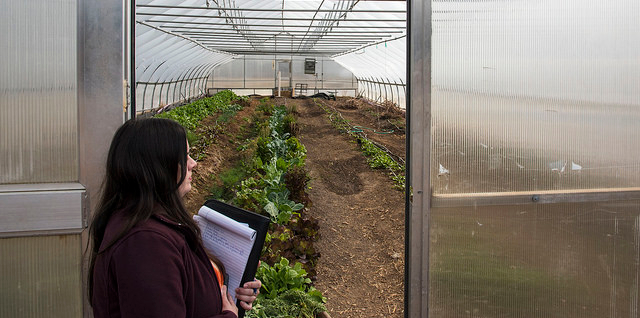 Course covers the business of agriculture