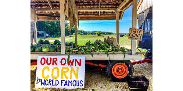 Cook County Farm Crawl Aug 19