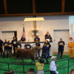 Records were broken at the 35th annual Governor's Charity Steer Show, which raised over $274,000 for the Ronald McDonald House Charities of Iowa. (Courtesy of Iowa Cattlemen's Association)
