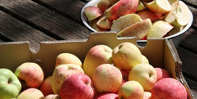 N.H. set to celebrate apple harvest