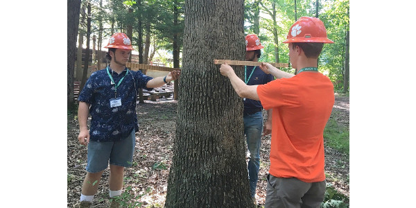 Taking accurate tree measurements is among the skills required of the South Carolina 4-H forestry team at the 2017 National 4-H Forestry Invitational. Team members Ethan Altman, Ashton Hallman and Myles Hutton placed ninth in the nation while Hutton took sixth-place individual honors. (Image Credit: Clemson University)