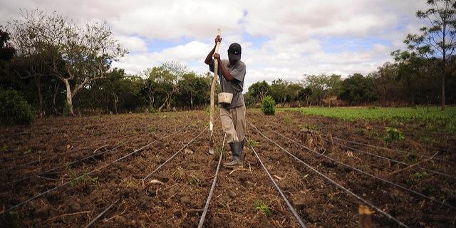 Woteki to speak on global food security