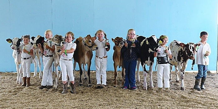 4-H members excel at the county fair