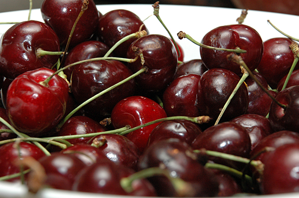 Cherry tour gives visitors an inside look