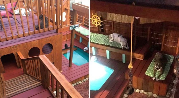 Man builds incredible mini mansion for his dogs