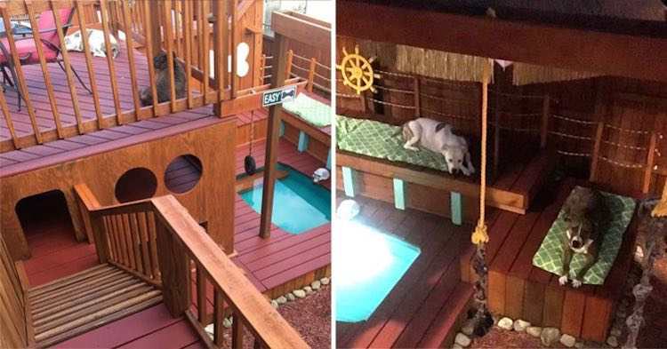 Man Builds Incredible Mini Mansion For His Dogs Morning