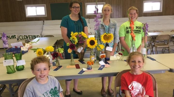 Master Gardeners host 4-H flower fair