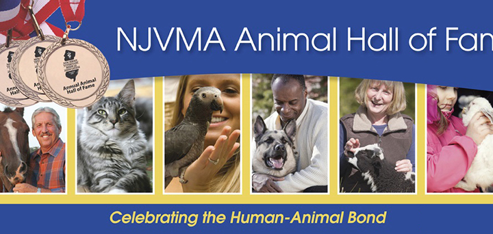 NJVMA seeks nominations for Animal Hall of Fame