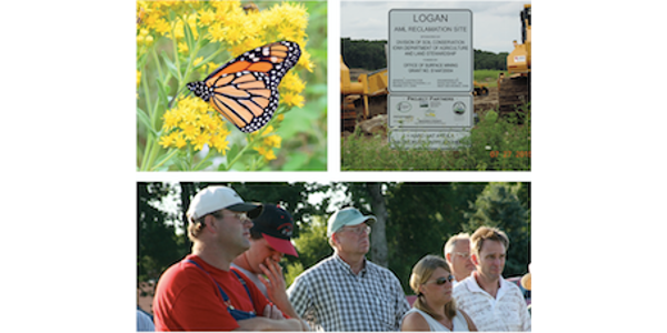 Monarch butterfly conservation field day Sept. 7