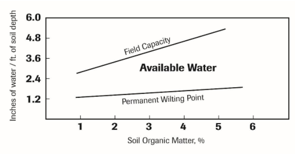 Image 1. Water holding capacity as influenced by organic matter