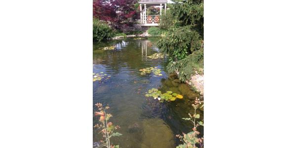 A Visit To Allen Centennial Garden Morning Ag Clips