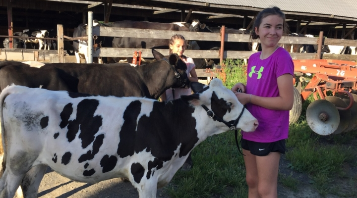 Many youth 'borrow' animals to learn skills