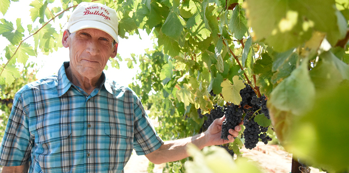 Introducing Fresno State's new winemaker