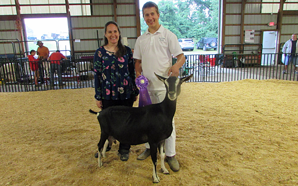 Chester County 4-H holds Dairy Goat Roundup
