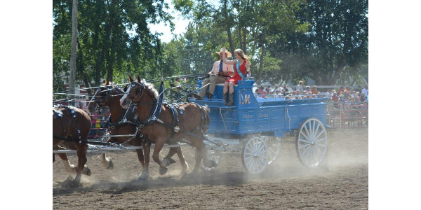 Horses once again highlight the events at the Outdoor Arena during the 2017 Clay County Fair, Sept. 9-17. (Courtesy of Clay County Fair)