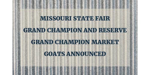 Champion market goats announced