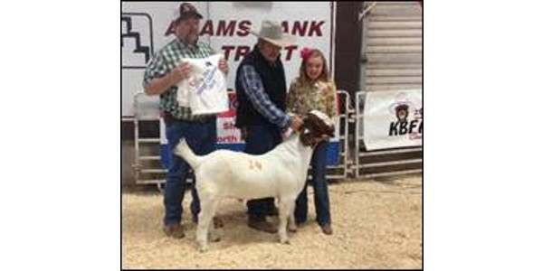 4S Goat Expo October 7th and 8th in North Platte