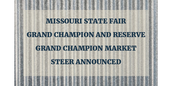 Grand Champion Market Steer announced