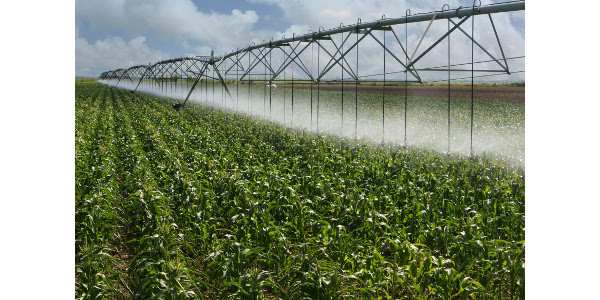 Nitrogen: why more later may be better