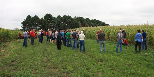 Viewing Rosmann organic corn. (Courtesy of Practical Farmers of Iowa)