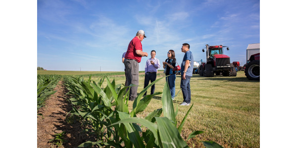 A global initiative for new corn markets