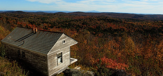 New England losing 65 acres of forest per day