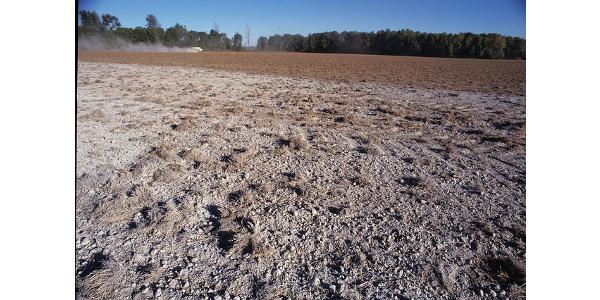 liming soil