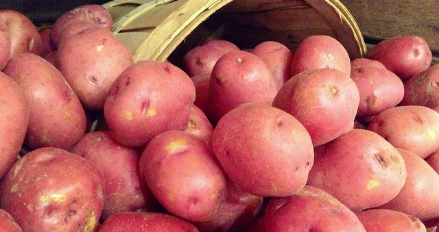 Feds to help efforts to fight potato pest